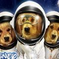 Space Buddies - Hvalpene I Rummet billede