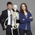Bones billede