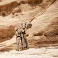 The Last Days on Mars billede