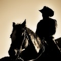 Rio Bravo billede
